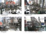 Cerveza de la botella de cristal del SGS Bcgf72-72-18 máquina que capsula de relleno que se lava 3 in-1