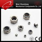 DIN982 DIN985 rostfrei und Kohlenstoffstahl-Hexagon-Kopf-Verschluss-Nylon-Muttern