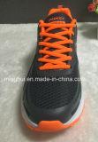 Chaussures courantes de sports