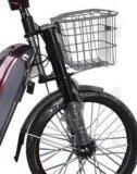 Bici eléctrica del motor sin cepillo del alto grado 350W (JSL013B)