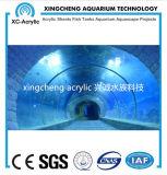Túnel do acrílico do projeto de Oceanarium
