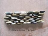 小石のタイルを舗装する高品質によって混合される地位