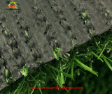 [نون-ينفيلّينغ] كرة قدم اصطناعيّة عشب مرج مع [سغس] تصديق