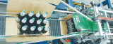 De Blikken van Ffor van de Verpakkende Machine van het Geval/van de Doos van de Hoge snelheid van Newamstar, Flessen