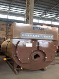 Toda la caldera de vapor de gasolina y aceite eficiente de condensación (del gas)