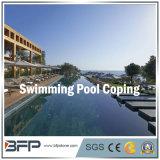 Zwarte Natuurlijke het Bedekken van de Pool van het Graniet Tegel voor Zwembad/Pool Surrouding