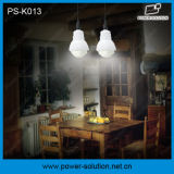 4W kit solar calificado de los bulbos del panel solar 3PCS LED para la familia (PS-K013)
