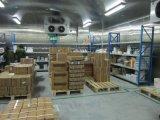 Espacio de almacenamiento en frío de alimentos congelados con alta calidad