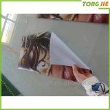 As crianças Waterproof a etiqueta da parede da borboleta 3D
