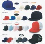 Gorras de béisbol de la promoción/casquillo del camionero/sombrero del compartimiento/sombrero hecho punto con su propia insignia