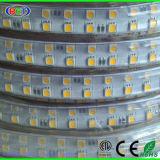 conformité imperméable à l'eau flexible de RoHS de la CE de lumière de bande de 5050 144LEDs DEL