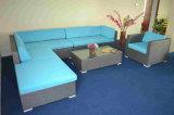 Im Freien heißer Verkaufs-modulares Sofa