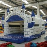 Gorilas inflables de los castillos del diseño de Aoqi (AQ519)