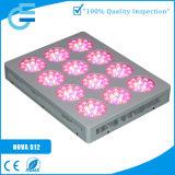 실내 Hydroponic 180*3W LED로 증가한다 빛을 증가하십시오
