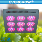 Indoor Plantsのための400W LED Grow Lights
