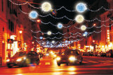 LED-Solargarten-Licht-Weihnachtsfeiertags-Dekoration