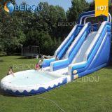 Populäre Kind-erwachsene Kind-riesiges aufblasbares Wasser-Plättchen für Verkauf