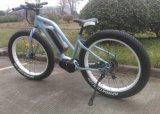 جديد [فمل] إطار العجلة سمين درّاجة كهربائيّة مع محرّك مركزيّ