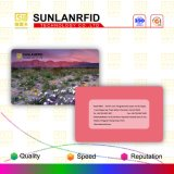carte sèche d'identification de puce de 125kHz Hitag S256 avec l'immatriculation
