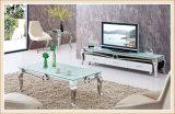 현대 거실 텔레비젼 대 스테인리스 유리제 커피용 탁자