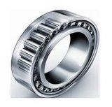 Zylinderförmige Rolle Bearing/SKF/NSK/NTN/NACHI/IKO/Nu2313m