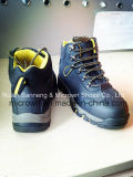 Sport Style di Cemented Safety Shoes Sn5218, Stronger Spider Design e Casual e Comfortable