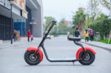 Картина типа Harley стоя 20inch мотоцикл самоката e больших колес размера 2 электрический