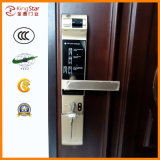 Security de aço Door com High Safety Index (FAM-D-JX-D2110)