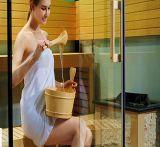 Piccole nuove sauna di disegno di Monalisa e stanza di vapore (M-6030)