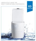 Weidansi en céramique lavent vers le bas la toilette d'une seule pièce de courroie (WDS-T6107)