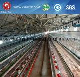 Geflügel-landwirtschaftliche Maschine-Bratrost-Batterie