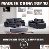 Modernes Form-Deutschland-Wohnzimmer-Leder-Sofa