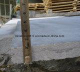 Calcare blu per la pavimentazione lastra/mattonelle smerigliatrice