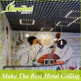 100 * 100 Techo de celda abierta de aluminio de color artístico para tiendas