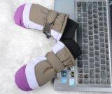 Kind-Ski-Handschuh/Finger-Handschuh-Kind-Ski-Handschuh der Kinder fünf/Kind-Winter-Handschuh/Detox-Ski-Handschuh/Okotex Handschuh/Handschuh-Ski-Handschuh/Handschuh-Winter-Handschuh