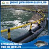Gaiola de flutuação dos peixes da plataforma dos peixes