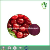 Estratto puro del mirtillo con gli antociani 1-25%, Proanthocyanidins 1%-70%