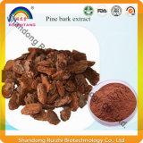 Casca natural P.E Polyphenol/OPC 90% do pinho da alta qualidade, 95%