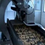 O anel feito sob medida diferente da batata lasca a linha de produção