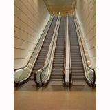 30 escalera móvil del salón de muestras de las compras caseras de 35 grados