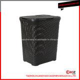 Mueble de la cesta del lavadero de la casa / de la inyección plástica