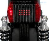 緑のTrasportationのための新しい方法リチウム電池80kmの移動性のスクーター