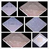 Sistemas de curado ULTRAVIOLETA del efecto del copo de nieve de TM-UV14m para el vidrio