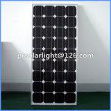 125W 고능률 단청 갱신할 수 있는 에너지 절약 Monocrystalline Solar 위원회