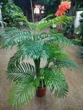 Заводы напольной или крытой пользы искусственние пальмы Gu20170216090038