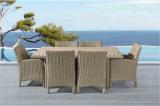 Стул и таблица отдыха двора круглого ротанга напольные