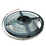 A tira flexível 60LEDs/M do diodo emissor de luz de SMD 2835 com Ce Lm-80 do TUV Certificated