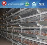 Jaula de batería del pollo del equipo de la avicultura