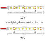 UL 240 LEDs/M à deux lignes, bande de SMD1210 (3528) DEL