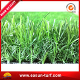 景色のための中国からの工場価格の総合的な草